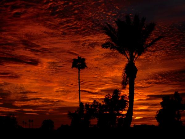 sunset 0201.jpg