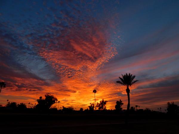 sunset 0203.jpg